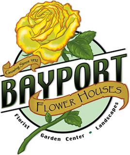 e19bf7a46d6fe admin | Bayport Flower