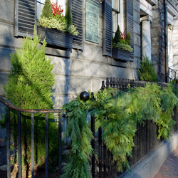 Pine branch garland adorning black wrough iron fence in boston