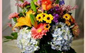 flowers, gifts, bayport flower houses, hydrangea